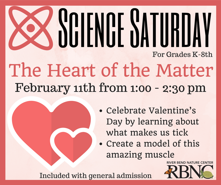 Science Saturday - River Bend Nature Center